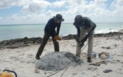 Royal Society Wolfson Fellow Professor Jens Zinke hunts for fossil coral to reconstruct elements of the sea for climate change research